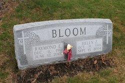 Raymond E Bloom
