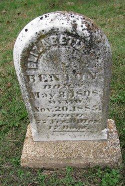 Elizabeth Ann <I>Johnson</I> Benton