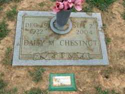 Daisy M Chestnut