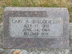 Gary A Theodorson