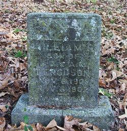William B Ferguson