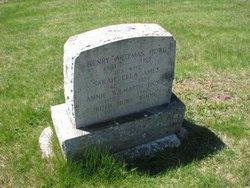 Henry Artemas Howe
