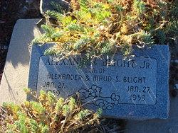 Alexander Blight, Jr