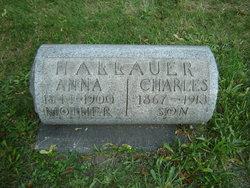 Charles Fritz Hallauer