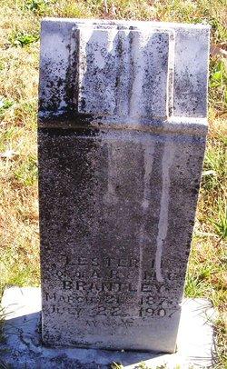 Lester M Brantley