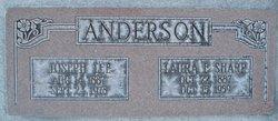 Joseph Lee Anderson