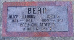 Alice <I>Williams</I> Bean