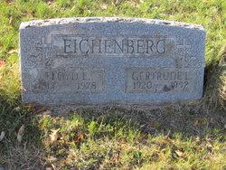 Floyd E Eichenberg