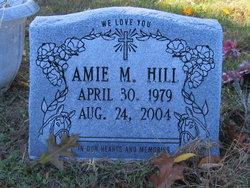 Amie M Hill