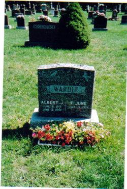 Albert Wardle