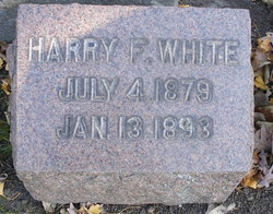 Harry F. White