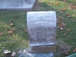 Laura Louisa James