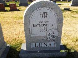 Raymond Luna, Jr