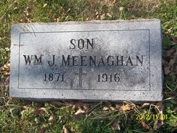 William J Meenaghan