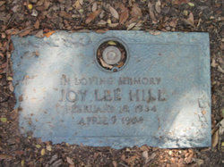 Joy Lee <I>Ziegler</I> Hill