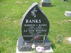 A. E. Ione <I>McKenzie</I> Banks