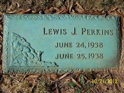Lewis J Perkins
