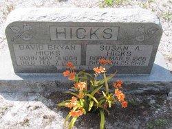 David Bryan Hicks