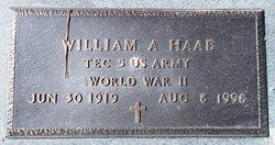 William Anthony Haab