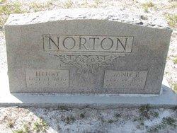 Henry Norton