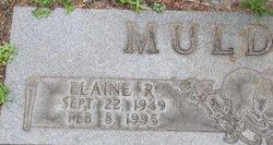 Elaine R Muldrew