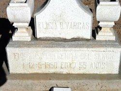 Eligia B Vargas