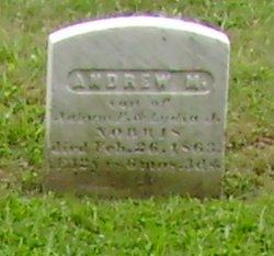 Andrew M. Norris