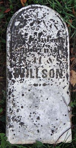Twin Infants Willson