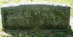 Charles G Gibson