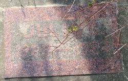 Julia Charlotte <I>Johnson</I> Lundquist