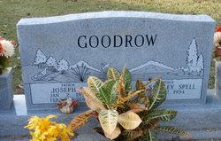 Joseph E Goodrow