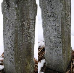 William Ernest Unknown