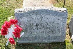 Patricia C Collier