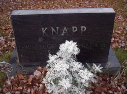 Elwin Eugene Knapp