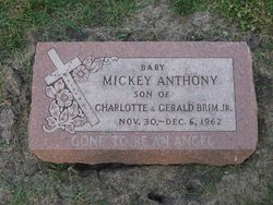Mickey Anthony Brim
