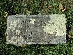 Henry Ammon