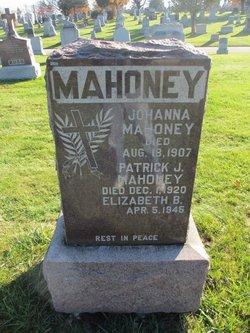 Patrick J Mahoney