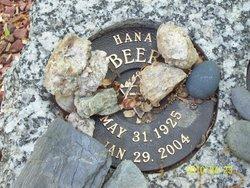 Hana Beer