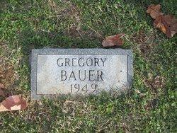 Gregory Earl Bauer