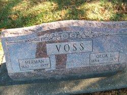 Olga Lucia <I>Samberg</I> Voss