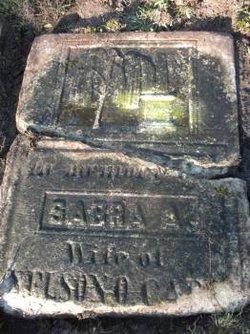 Sabra Ann <I>Griswold</I> Cady