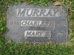 Mary E Murray