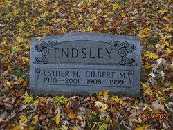 Gilbert M Endsley