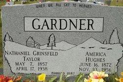 Nathaniel Grinsfeld Taylor Gardner