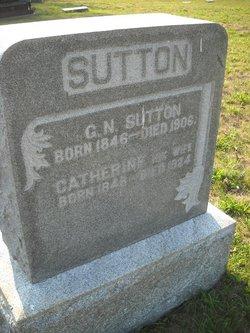 Greenleaf N Sutton