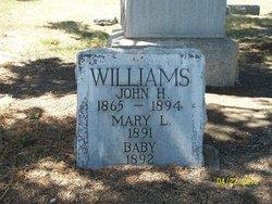Mary L Williams