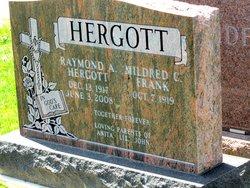 Raymond A Hergott