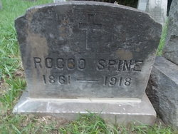 Rocco Spine