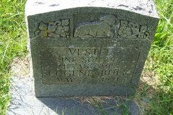 Vestel Bull