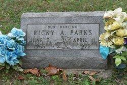 Ricky A Parks